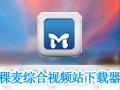 稞麦综合视频站下载器(xmlbar) 9.5